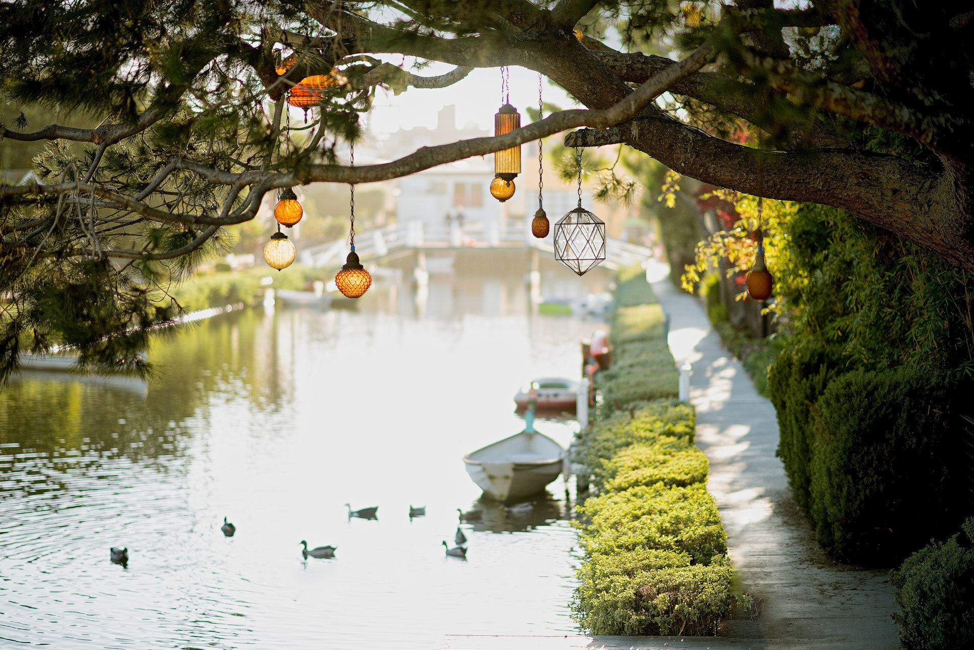 Staycation Post 001: Venice Beach Canals